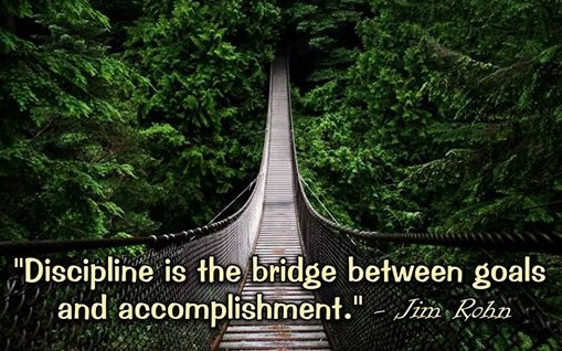 Discipline bridge